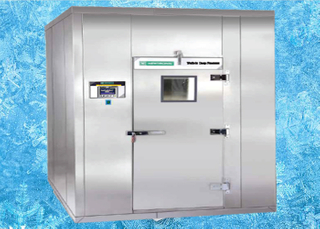 WALK-IN deep Freezers Galvanized Steel Plate with PU Composite sandwich panel,Cold Room